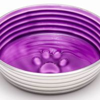 Gift Ideas for Pets: Loving Pets! #Houndations #FoodBowls #Treats